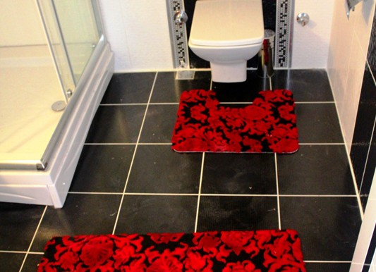 1+1 banyo tuvalet1