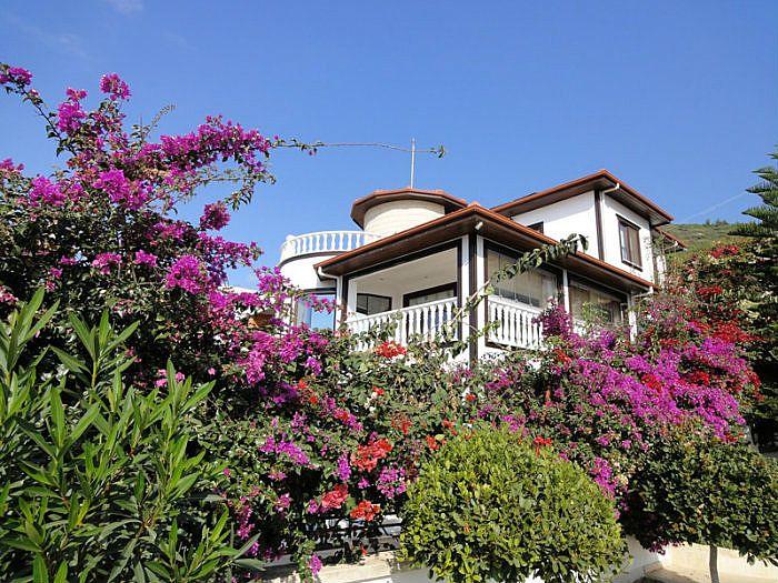 Elasu villa, Alanya Homelet